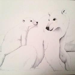 Polar bears by Gaabs
