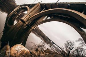 Bridge by 5isalive