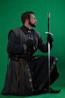Knight STOCK II by PhelanDavion