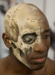IMATS 13 - Gray's Anatomy by Battledress
