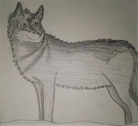Wolfie by AnDrewDrawsArt