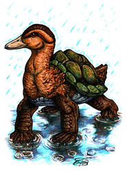 Day 20: Turtle Duck by ReneCampbellArt