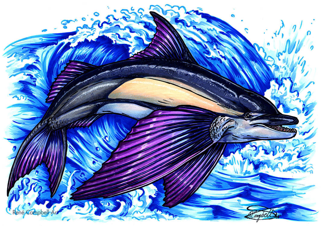 Day 29: Flying Dolphin Fish by ReneCampbellArt