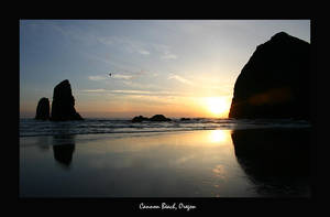 Cannon Beach by Stewdog