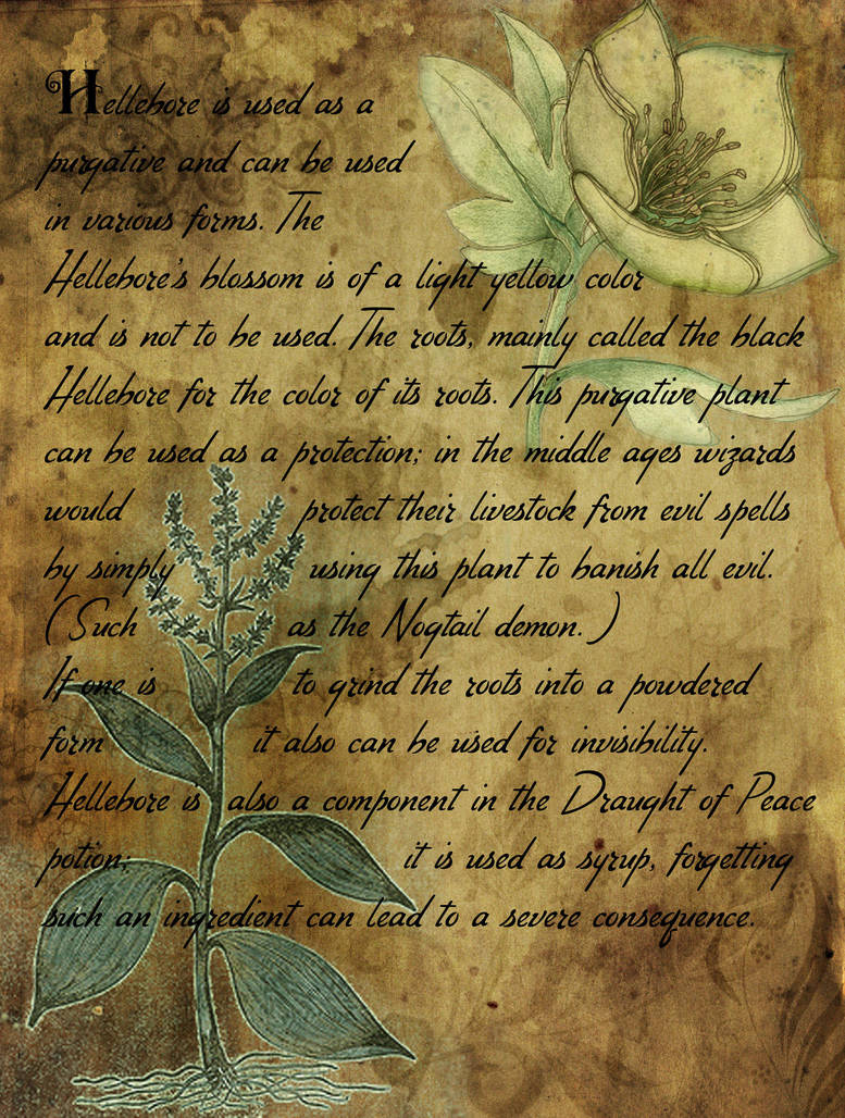 Herbs and Fungi - Hellebore by Lost-in-Hogwarts