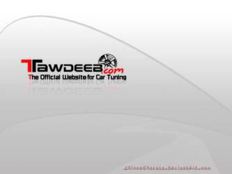 TawdeeB.com by ChiccoGhazala