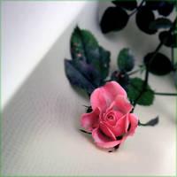 Rose II by Anca-Mihaela