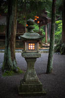 Lantern In The Gloom by Quit007