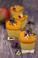Mango Mousse by theresahelmer