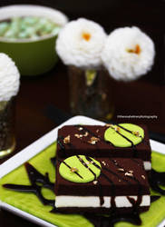 Chocolate Entremet by theresahelmer
