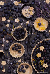 In The Middle of Making Blueberry Tarts by theresahelmer