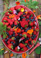 3 O'clock This Afternoon, My Berry Harvest by theresahelmer
