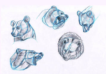 Bears by sofmer