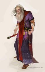 Evil wizard by GuzBoroda