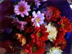 Birthday Flowers by wishez