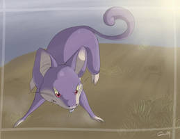 Rattata by Pookpic