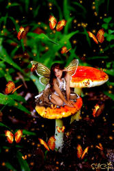 Orange Fairy by silcuper