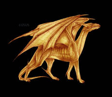 Golden dragon by L-U-S-U-S