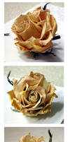 stock 712: withered rose by sophiaastock