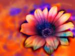 Sunshine Flower IV by theOrangeSunflower