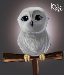 Owl by S-a-n-t-i-l