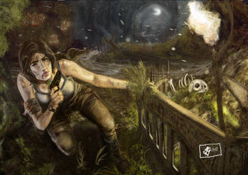 Tomb Raider 2012 by padraven