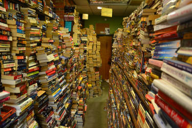 Book Store by EnchantedWhispersArt