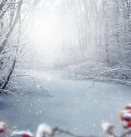 Premade-Winter by EnchantedWhispersArt