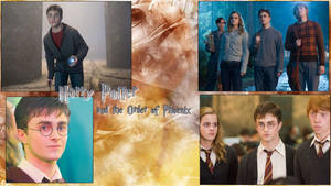 Harry Potter and The Order of the Phoenix Wallpape by NatouMJSonic