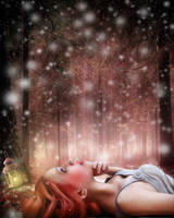 Winter Dreams by theancientsoul