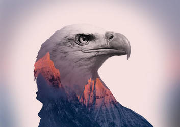 Double Exposure Eagle 3 by BitsN