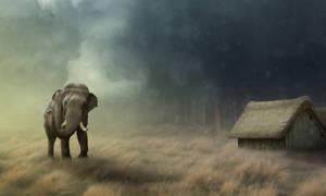 Elephant in woods by Deezhan