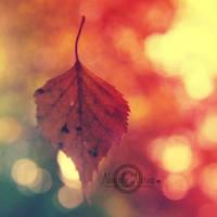 Spirit Of Autumn by NayeliNeria