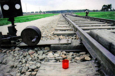 rail at Auschwitz by regoodstuff