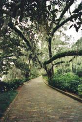 Pathway in Maclay Garden by regoodstuff