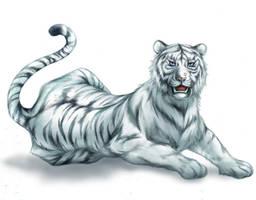 white tiger by sandersonia