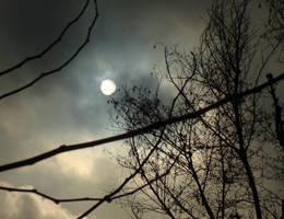The Sun by Oatmealmonkey