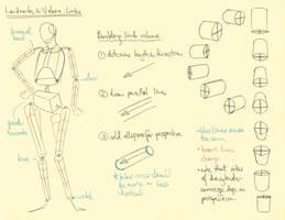 Hampton p.46-49: Limb Landmarks + Volume by theThirdCartel