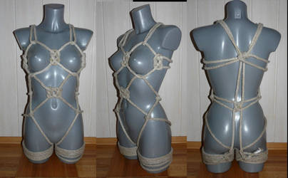 Harness 1 by 18Sieben