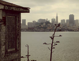 San Francisco from Alcatraz by editordistriktmag