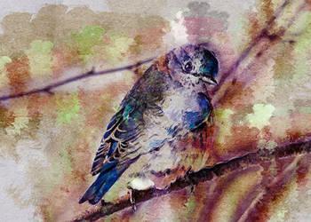 Blue Bird Hand Painting Thumbnail by DreamInDigitalDreams