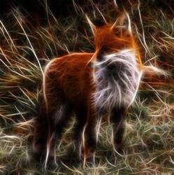 Fox Fractals by DreamInDigitalDreams