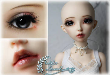 Fairyland Celine - FaceUp by mira-Ri