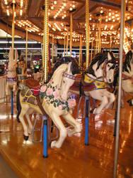 Cryptic Carousel I by fantasiafaerie