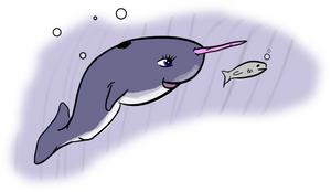 Baby Narwhal by doctormo