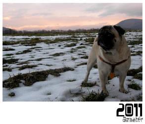 Pug Winter 2011 by Cactuzzz