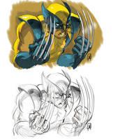 Wolverine Sketch by MahmudAsrar