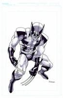 NYCC 2008 Wolverine by MahmudAsrar