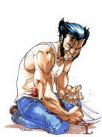 Wolverine by MahmudAsrar