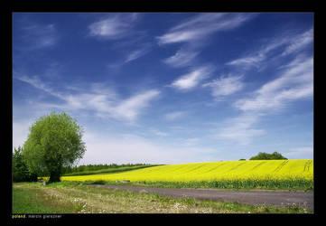 Shades of Spring I by yonashek